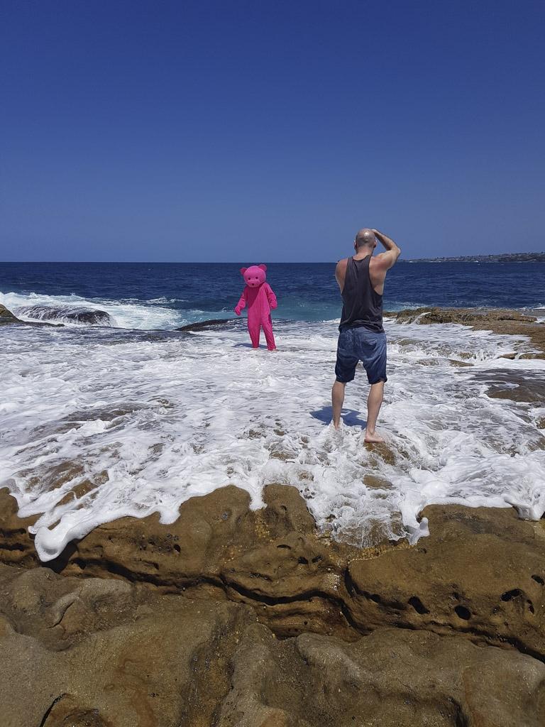 Pink Bear in Bondi Beach