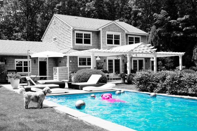 Hamptons Pool Bear