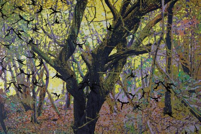 Oil, Acrylic & Screen Print on Canvas