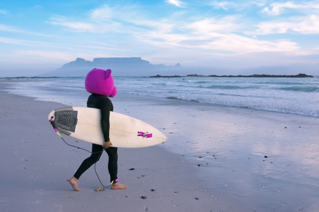 Pink Bear surfing in Cape Town, South Africa